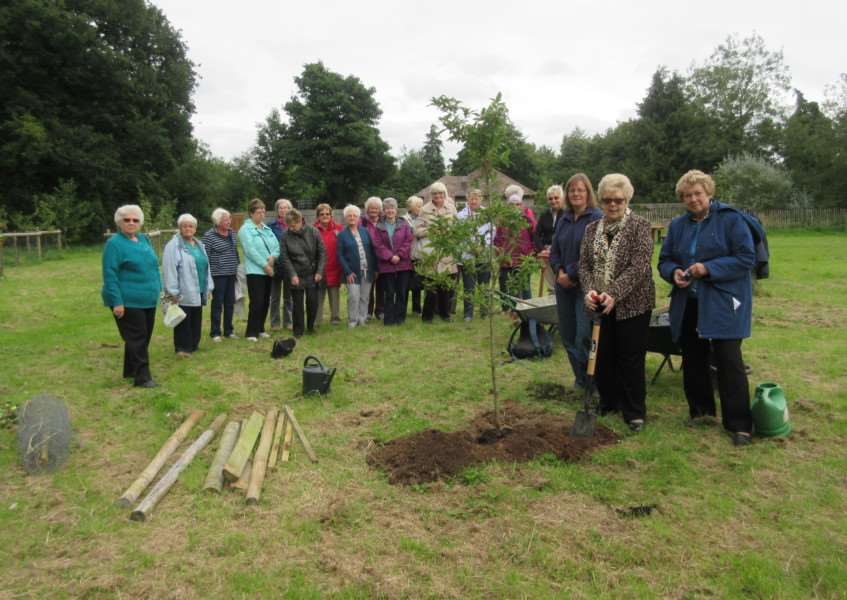 Nubourne WI members planting a tree in Bourne Community Orchard